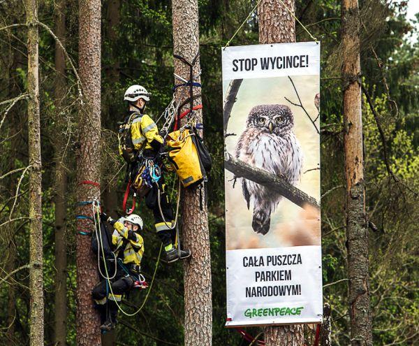 Protestplakate