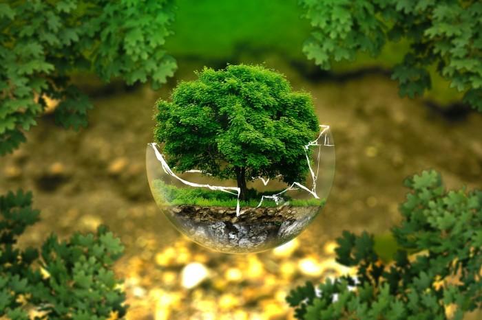 Nachhaltigkeit-im Alltag