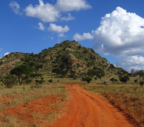 Unsere Elefantenwaise Maktao wird in einigen Jahren wieder im Tsavo East-Nationalpark ausgewildert. Nur ein Grund, um den knapp zwölftausend Quadratkilometer großen Park einen Besuch abzustatten. Zum Größenvergleich: Berlin hat gerade einmal eine Gesamtfläche von knapp 892 Quadratkilometern.