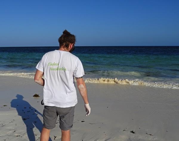 Um diesen Wert zu erreichen, begleiten wir die jungen Meeresschildkröten bis ins kniehohe Wasser.