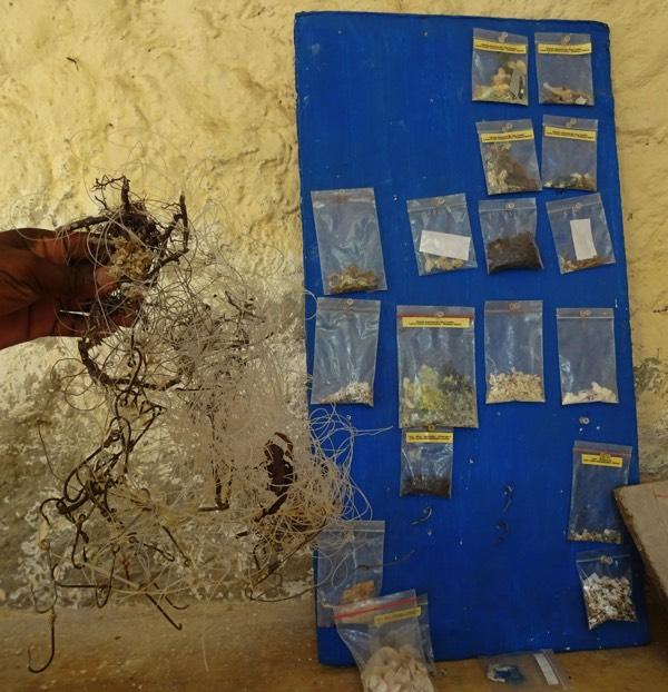 Plastikteile und Mikroplastik, die in den Mägen der Schildkröten gefunden wurden. Auch Geisternetze und Angelhaken bilden eine massive Gefahr für die Meerestiere.