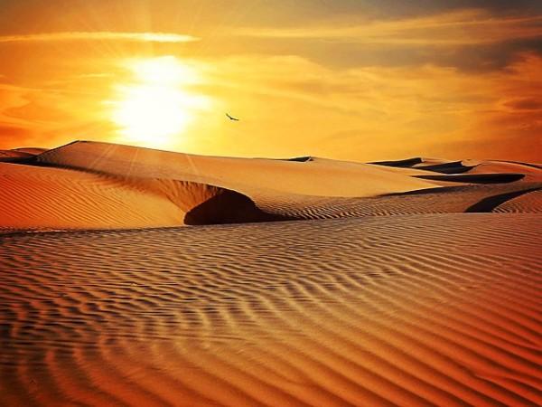 Wüste mit Sonnenuntergang