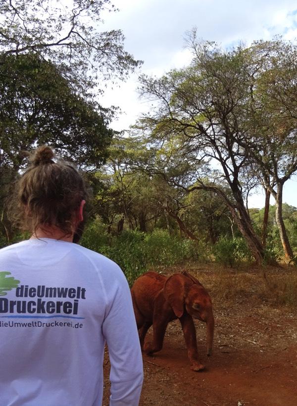 Es ist eine Freude zu beobachten, wie der knapp zweijährige Maktao und andere Elefantenbabys wild und unbekümmert im Wald umhertollen.