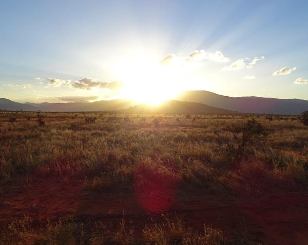 Ein unglaubliches Safari-Wochenende mit traumhaften Eindrücken der Tierwelt Kenias endet mit einem majestätischen Sonnenuntergang über der Graslandschaft des Tsavo East.