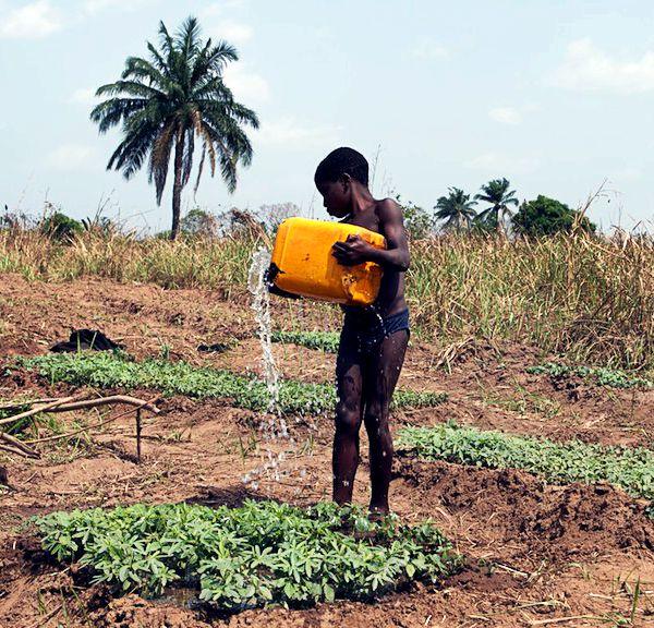 Kind beim Pflanzen gießen in Togo