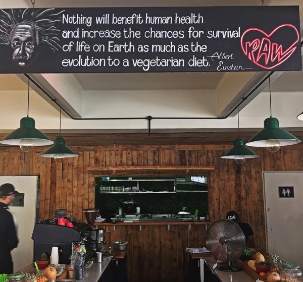 Veggie Einstein Zitat zum Fleisch-Verzicht